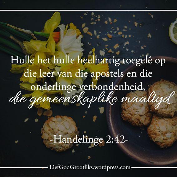 Toegewyd tot gebed   Voelgoed Ons Groei deur Gebed blogs is nou op Finesse se Voelgoed webtuiste. Gaan maak gerus 'n draai daar. Dankiehttps://www.voelgoed.co.za/blog/toegewyd-tot-gebed