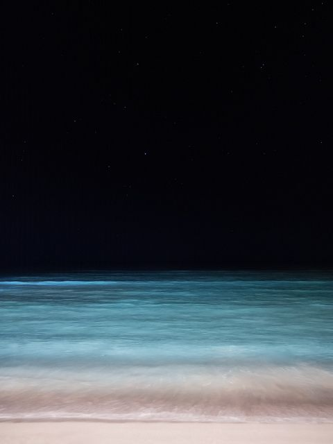Sea and Sky - Waikiki at Night | Flickr - Photo Sharing!