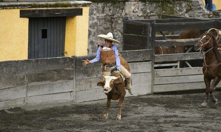 Charreria, the art of Mexican Rodeo DSC09116 copy