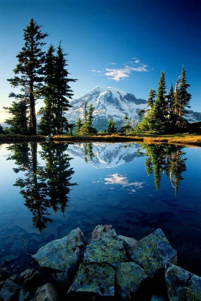 Mount Rainier National Park #LandscapePhotography