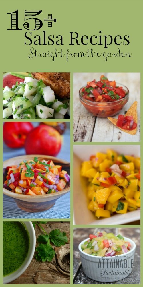Garden (or orchard!) fresh produce is the perfect reason to whip up a batch of salsa. From basic tomato salsa to toppings featuring cactus, strawberries, cucumbers, and cilantro, you're sure to find something here to make your tastebuds happy.