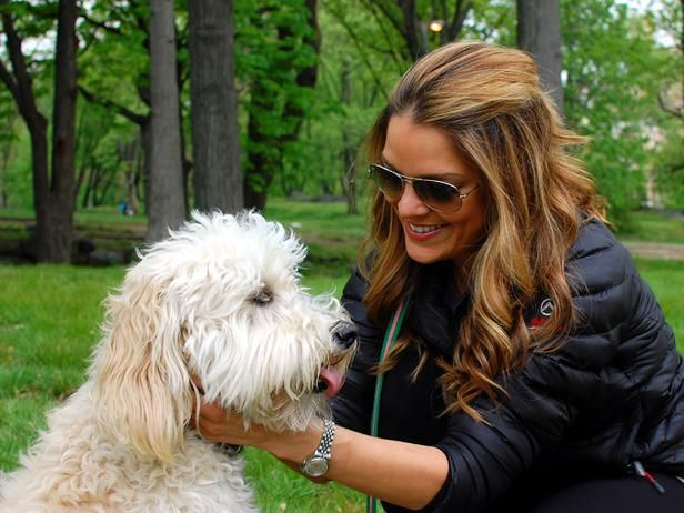 Sabrina Soto keeps Harper in mind when it comes to designing her own home. > http://www.hgtv.com/decorating-basics/cute-pets-in-our-favorite-spaces/pictures/index.html?soc=pinterestHgtvs, Hgtv Host, Central Park, Hgtv S Posh