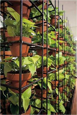 Use reinforcing mesh to create a vertical garden