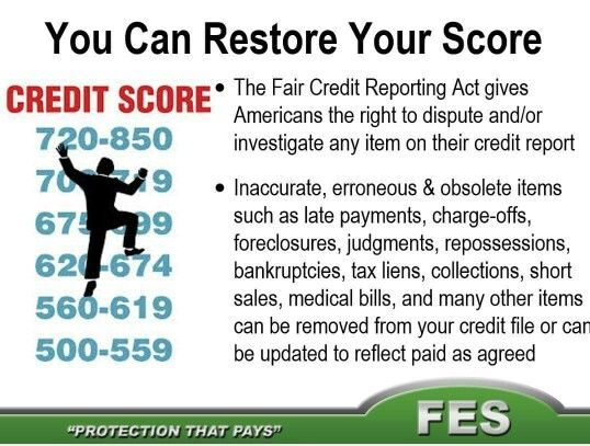 Best 25+ Credit bureau reports ideas on Pinterest Get free - credit report template