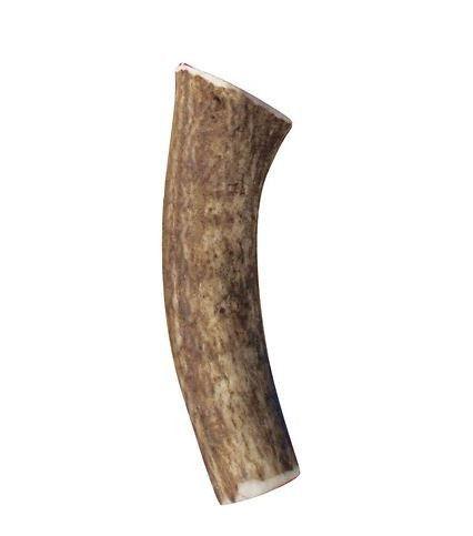 KONG Whole Wild Elk Antler Dog Chew Sz: Medium