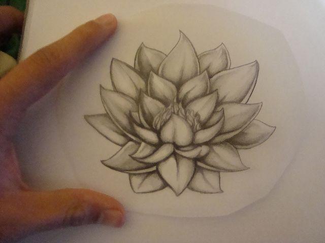 Flor De Loto Para Tatuaje En Blanco Y Negro Imagui