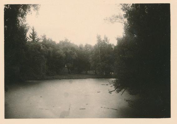Groß Trakehnen, Dorf Trakehnen, Blick auf den Teich