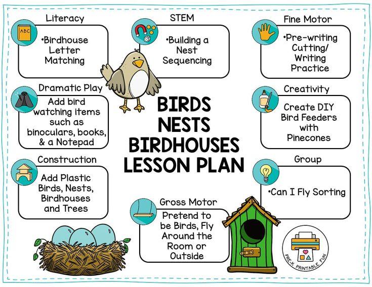 Birds, Nests, and Birdhouses Preschool Activities, Free ...