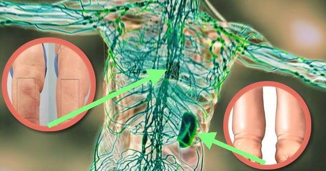 Un articol de Mihaela Iliescu     Pentru a intari sistemul imunitar, primul pas este curatarea limfei.     Sistemul limfatic este locul in ...