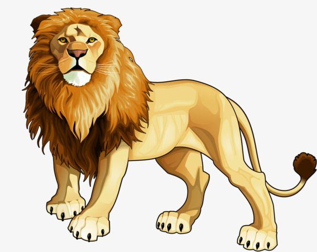 كرتون Lion Illustration Animal Clipart Lion Vector