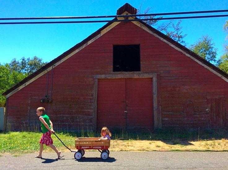 Old barn in Kenwood, CA