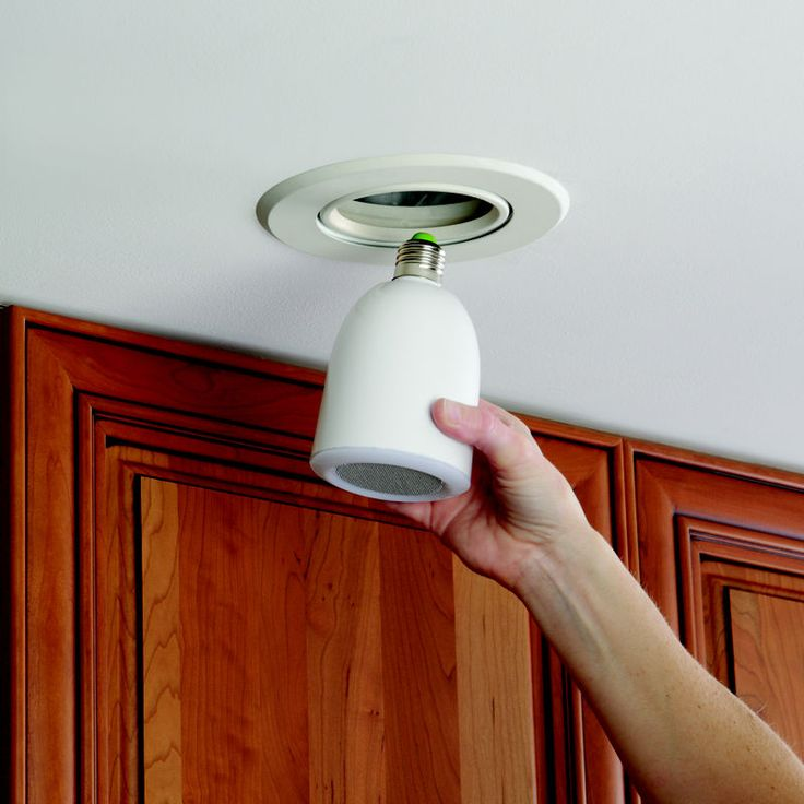 A speaker which screws into a lightbulb socket. It connects wirelessly to a ipod dock.