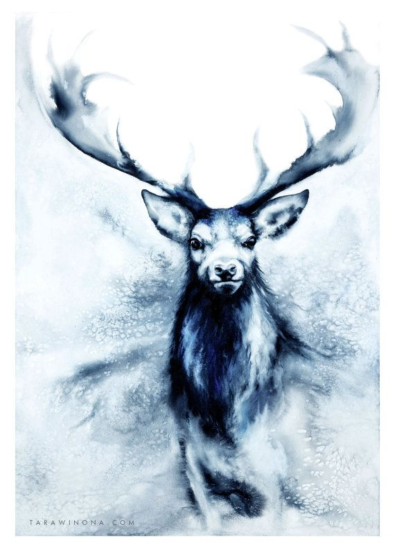 Blue stag watercolour art print  Feet in Two Worlds  by Tarawinona
