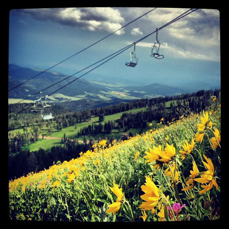 305 Best Images About My Homes In Montana On Pinterest