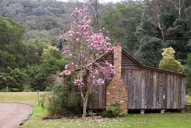 Cottage in the mountains, Southern Highlands NSW