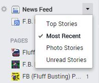 FB Purity adds new Newsfeed  Options: