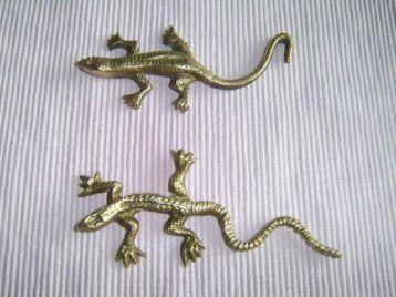 Koperkleurige salamander, we gebruikten de staart om de lades van het secretaire op te maken