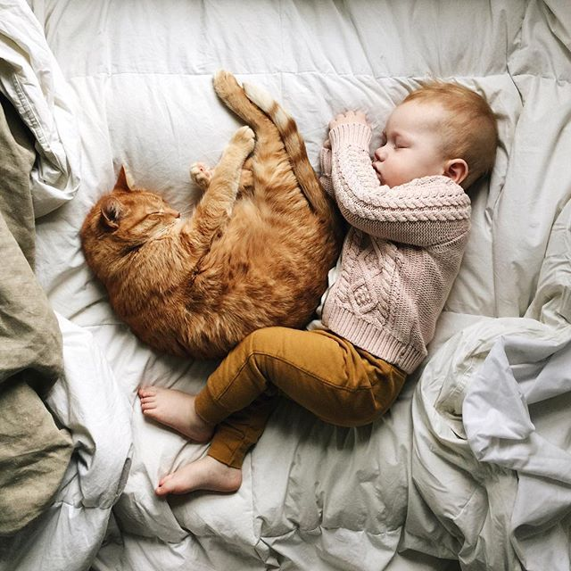 I sure hope my son and cat sleep together like this at some point