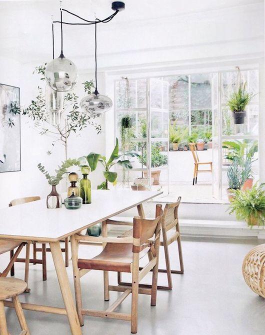 decorating with plants / sfgirlbybay