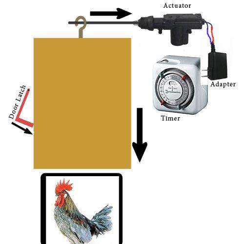 Automatic Chicken Coop Door