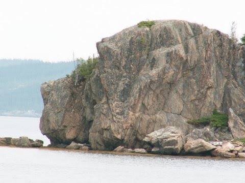 Only a Newfoundlandlover can see this!! Newfoundland dog head rock. This is great! One very observent Newf lover! Location:Hare Bay, Bonavista Bay! In Newfoundland. That makes it even more special!!