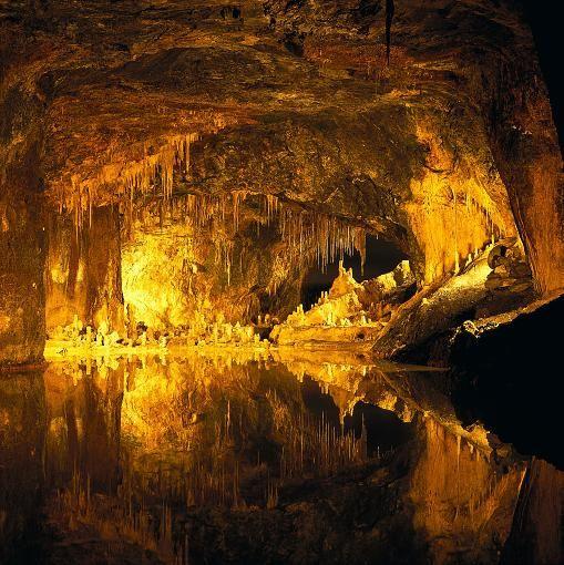 Die Saalfelder Feengrotten sind ein ehemaliges Bergwerk in Thüringen. Bekannt ist diese Tropfsteinhöhle für ihre Farbenvielfalt. Seit 1993 sind die Feengrotten im Guinness-Buch der Rekorde als Die farbenreichsten Schaugrotten der Welt festgehalten.