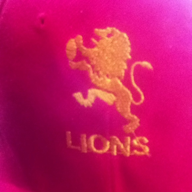 My favorite rugby team! Go Lions