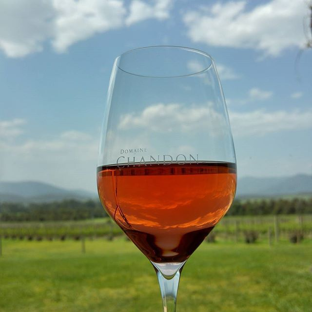 The vibrant huge of this 2012 Pinot Noia Rose enhanced by the stunning outlook @chandonaus #withaview #summerinaglass #yarravalley #wine #yarravalleylife
