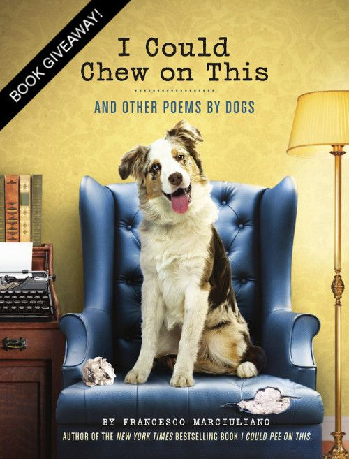 'I Could Chew on This' Book Giveaway from Chronicle Books!!