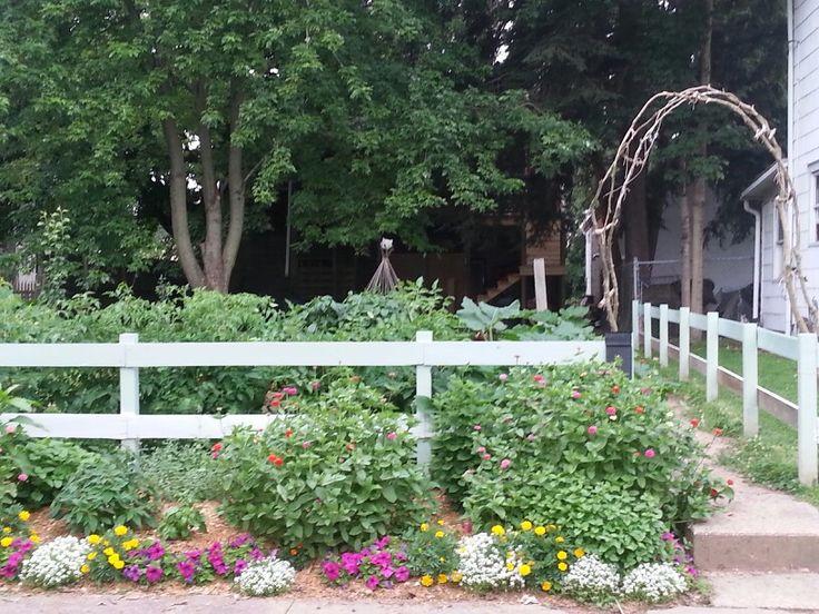 Front yard vegetable garden.