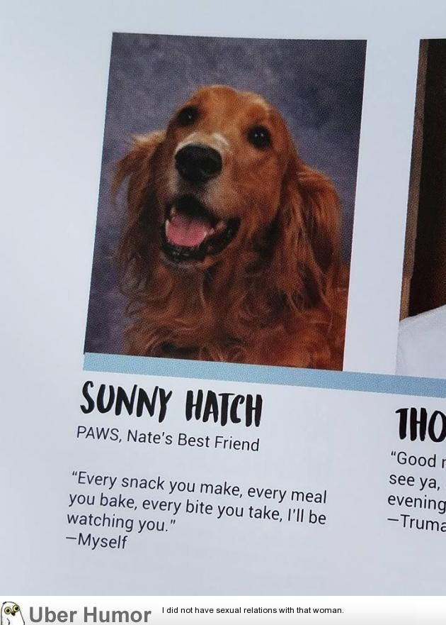 They Put My Friend S Service Dog In The Yearbook Funny Pictures