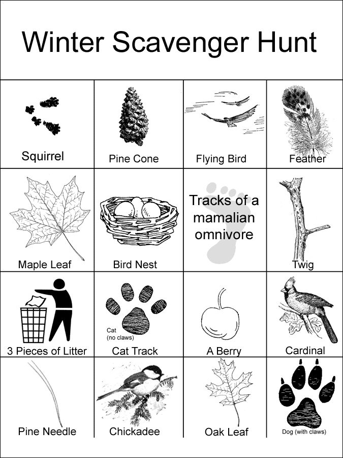 Winter Scavenger Hunt Card Printable With Images Nature