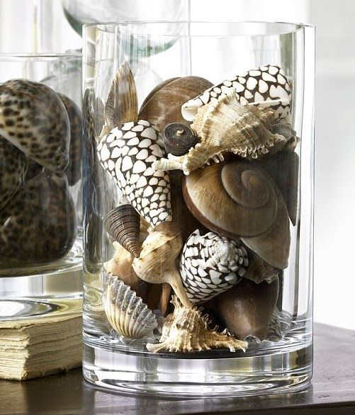Shells in glass vases always beautiful i sell - How to decorate with seashells ...