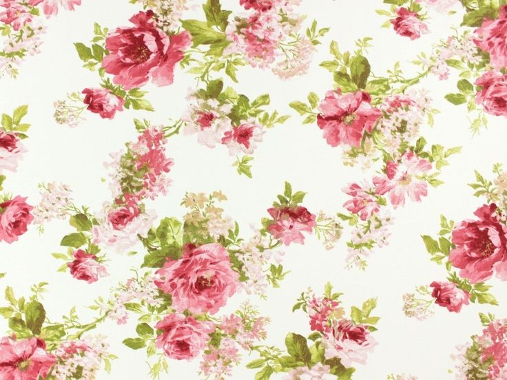 Roses Land 4