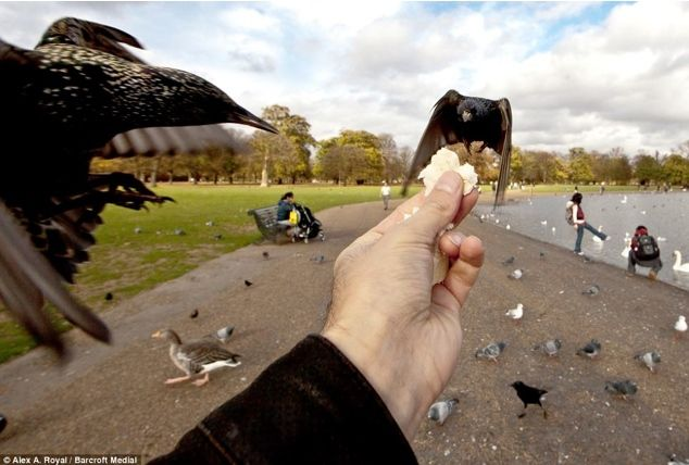 pov photography buying - Google Search