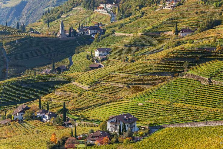 Tirol del Sur (Italia) (pineado por @OrgulloWine)