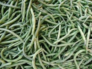 Dehydrating Green Beans - Food Storage and Survival
