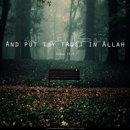 "#quran  ""And put thy trust in Allah, and enough is Allah as a Disposer of affairs."" [Quran 33:3]"