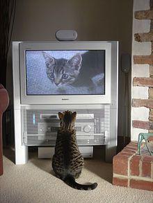 Display resolution - Wikipedia, the free encyclopedia