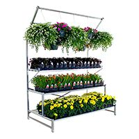 Tri-Step Display Bench - 12' display with purlin