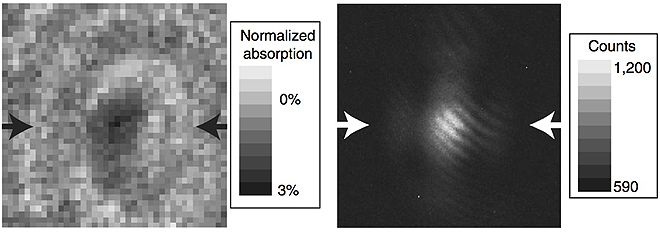 A Single Atom: The world's highest-resolution optical microscope captures the shadow of a single yttrium atom (at left, with the fluorescent-lit image at right).