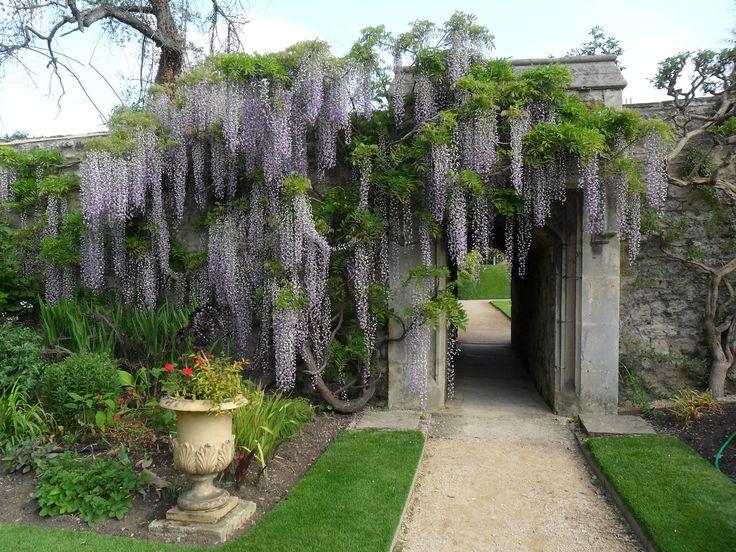 Worcester College garden, Oxford