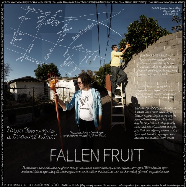 The Fallen Fruit Movement allows people to rediscover their own backyards turning urban foraging into a treasure hunt.