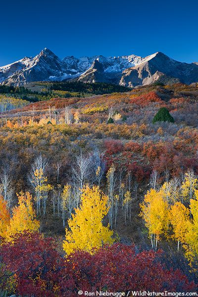 San Juan Mountain, Colorado (No, I did NOT pin this to the wrong board. I would die for this to be my backyard! LOL!)