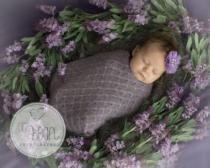 Newborn maternity photographer launceston tasmania