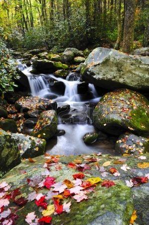Egy kis víz és piros levelek Smoky Mountains Észak - Karolina