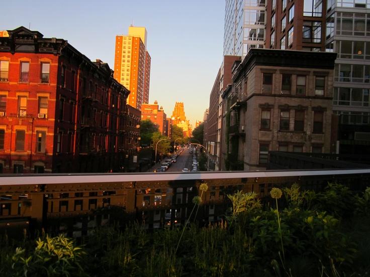 The High Line. NYC.