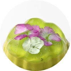 花のババロア hover エディブルフラワー( 食べれるお花) ババロア専門店 東京土産やバレンタイン・ホワイトデーのプレゼントに