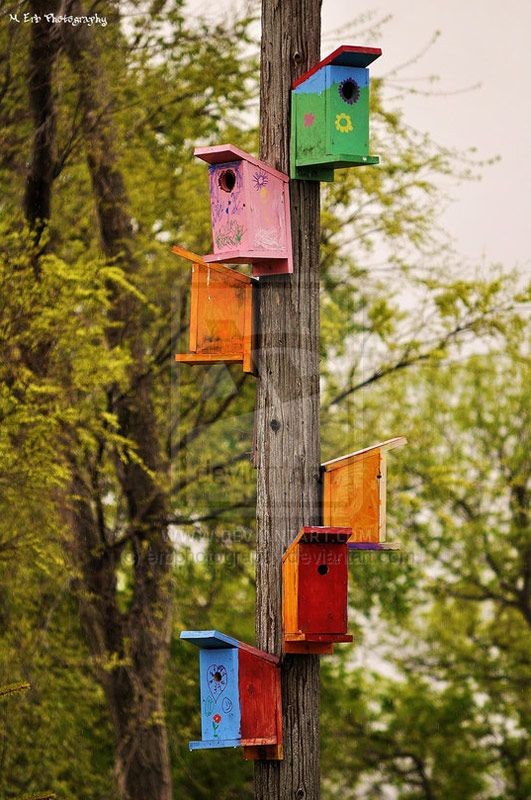 Bird feeder poles lowes woodworking projects plans for Bird feeder pole plans