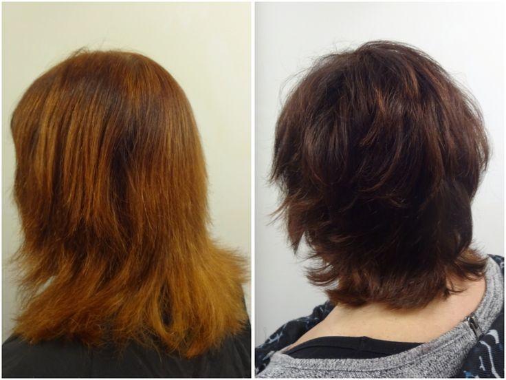 En workshop med fyra frisörer och sju modeller som fick var sin ny hårfärg.